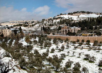 <strong> Mount of Olives